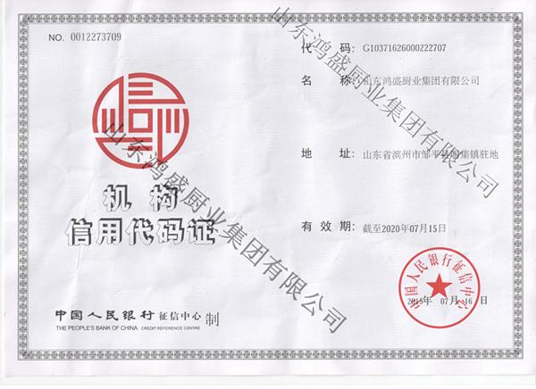 集团机构信用代码证